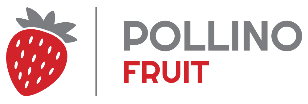 Pollino Fruit | Official website